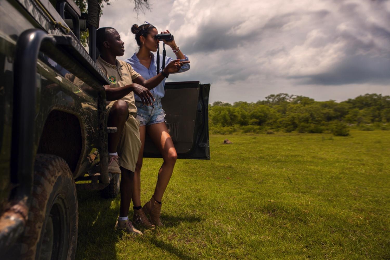 Luxury Short Safari